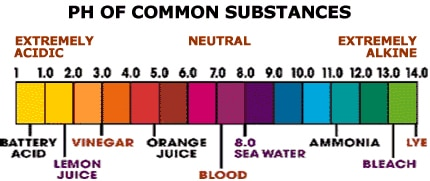 Ph Of Common Substances