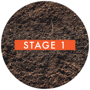 stage-1-dirt
