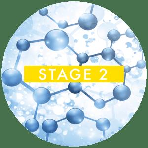 stage-2-metals