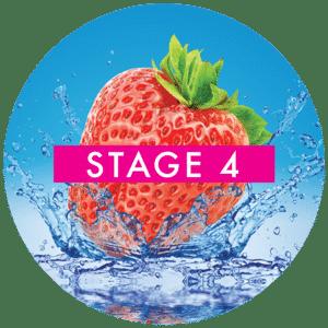 stage-4-alkaline